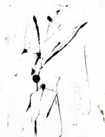 14_200402.jpg